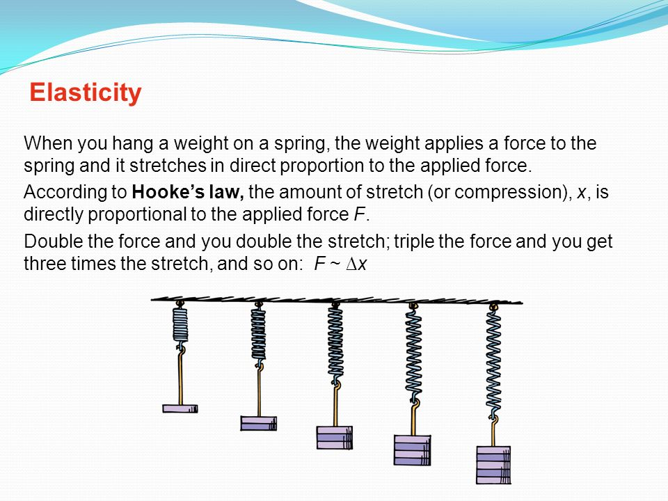 Elasticity When you hang a weight on a spring, the weight applies a force to the spring and it stretches in direct proportion to the applied force.