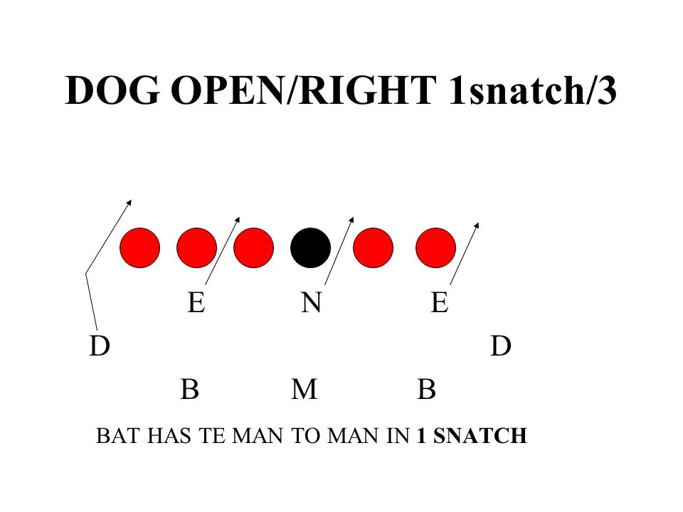 DOG OPEN/RIGHT 1snatch/3
