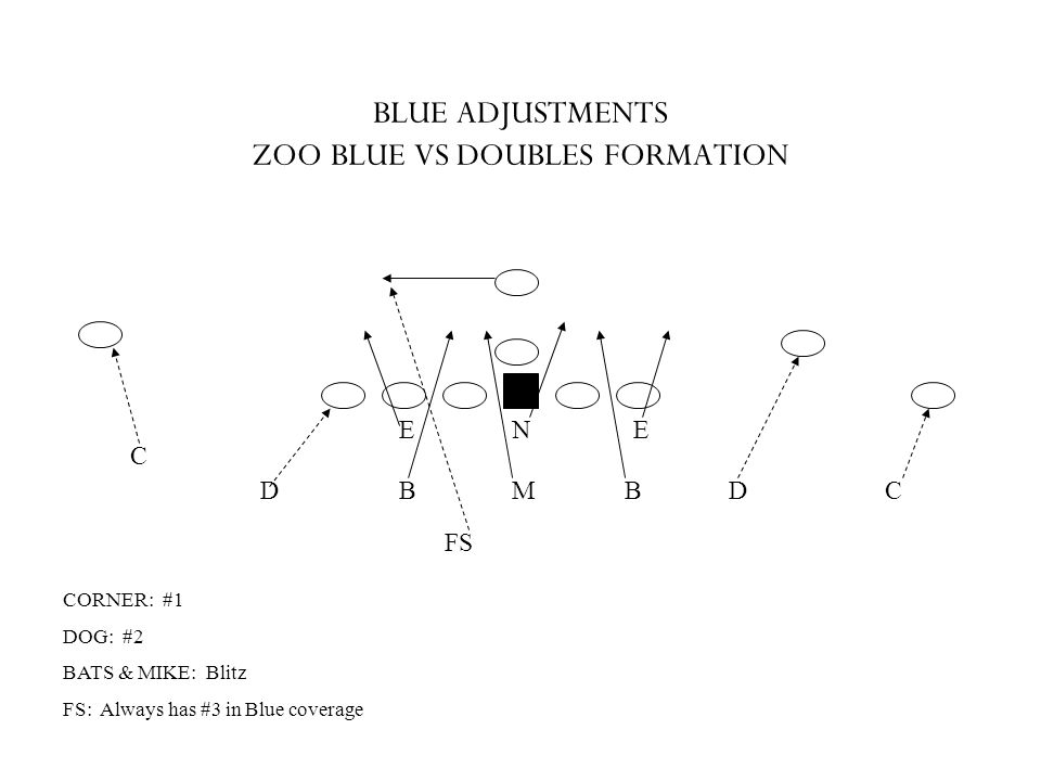 BLUE ADJUSTMENTS ZOO BLUE VS DOUBLES FORMATION
