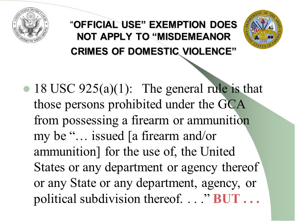 OFFICIAL USE EXEMPTION DOES NOT APPLY TO MISDEMEANOR CRIMES OF DOMESTIC VIOLENCE