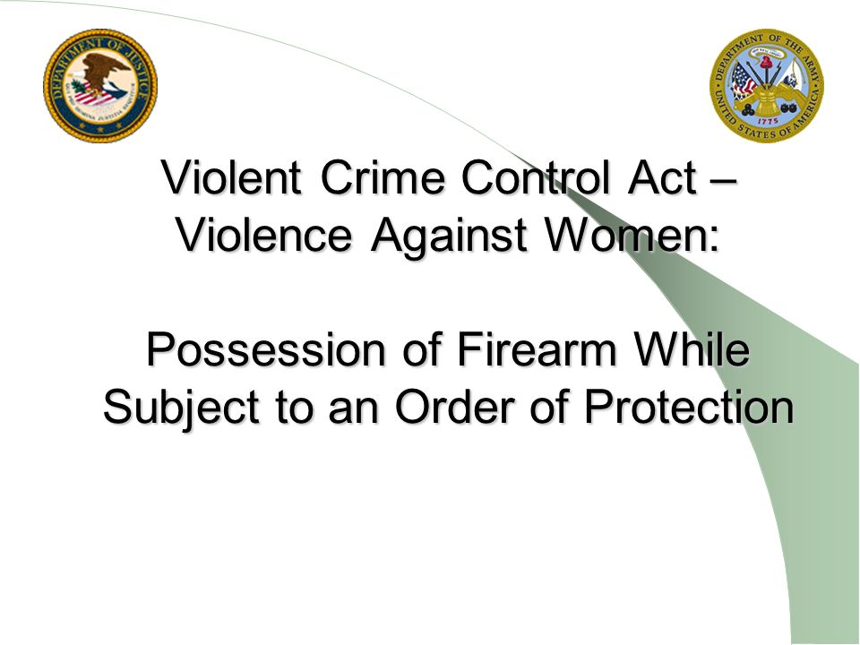 Violent Crime Control Act – Violence Against Women: Possession of Firearm While Subject to an Order of Protection