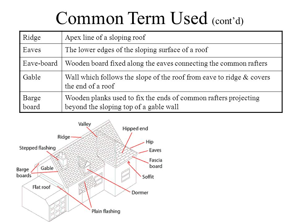 Common Term Used (cont'd)