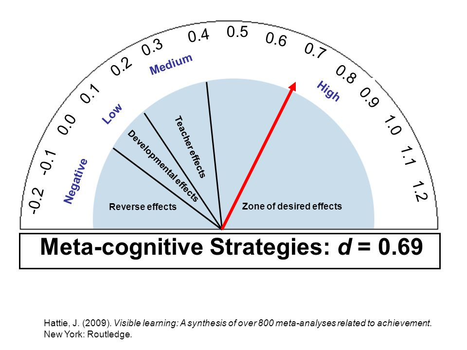 Meta-cognitive Strategies: d = 0.69