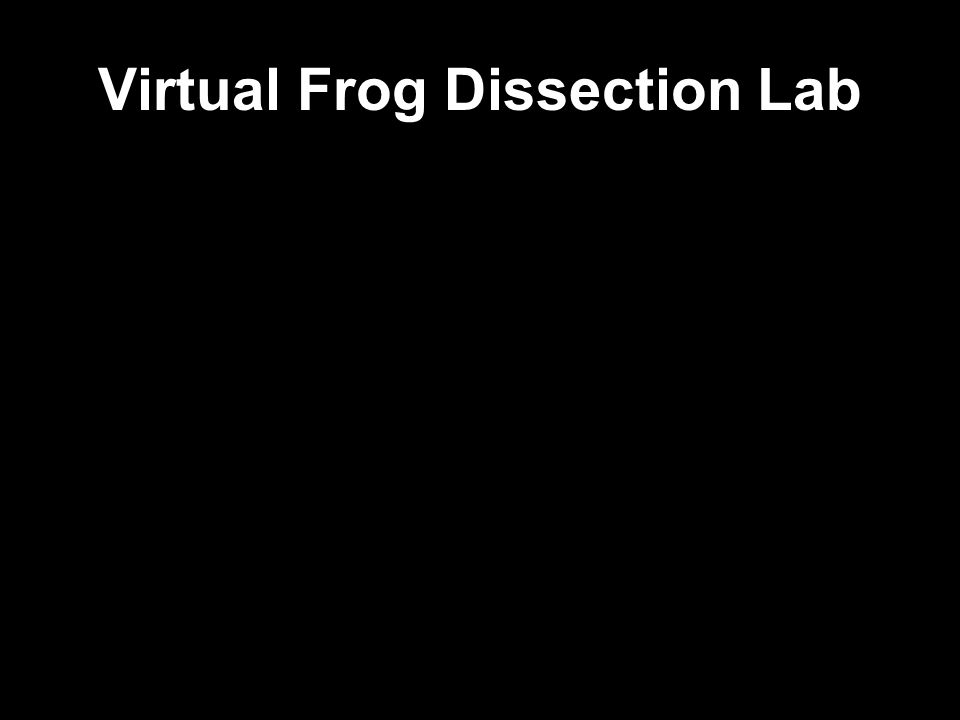 Virtual Frog Dissection Lab
