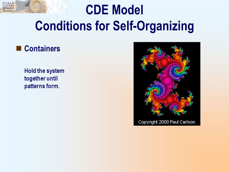 CDE Model Conditions for Self-Organizing