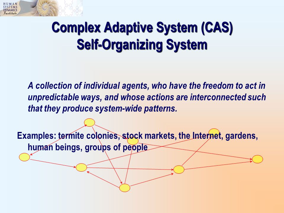 Complex Adaptive System (CAS) Self-Organizing System