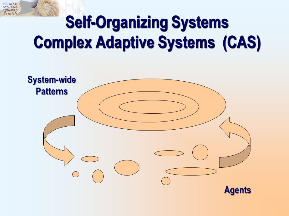 Self-Organizing Systems Complex Adaptive Systems (CAS)