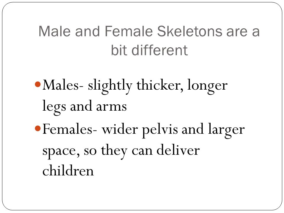 Male and Female Skeletons are a bit different
