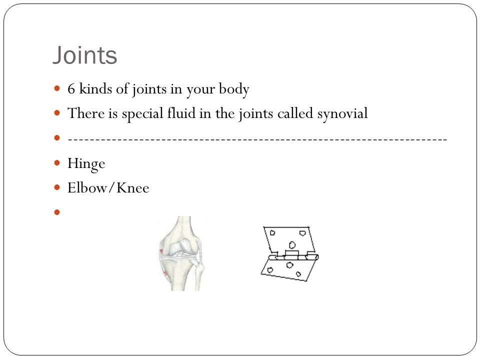 Joints 6 kinds of joints in your body