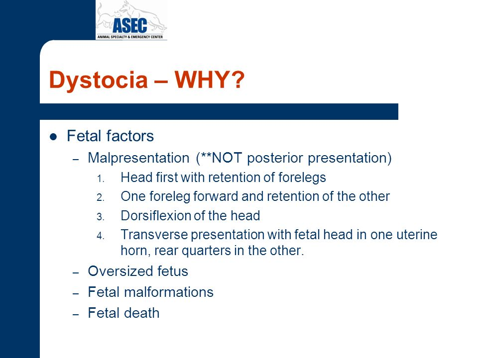 Dystocia – WHY Fetal factors