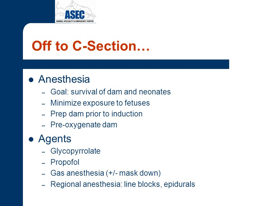 Off to C-Section… Anesthesia Agents Goal: survival of dam and neonates
