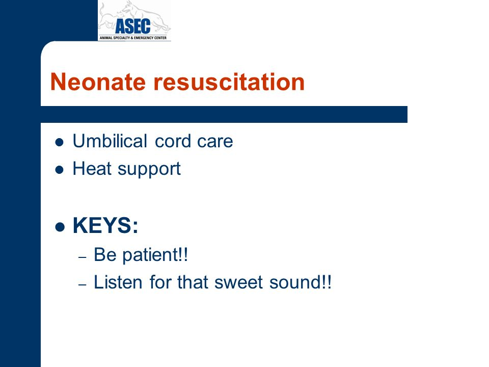 Neonate resuscitation