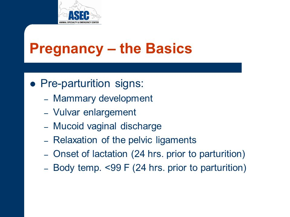 Pregnancy – the Basics Pre-parturition signs: Mammary development