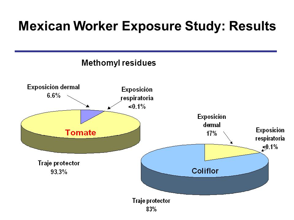 Mexican Worker Exposure Study: Results