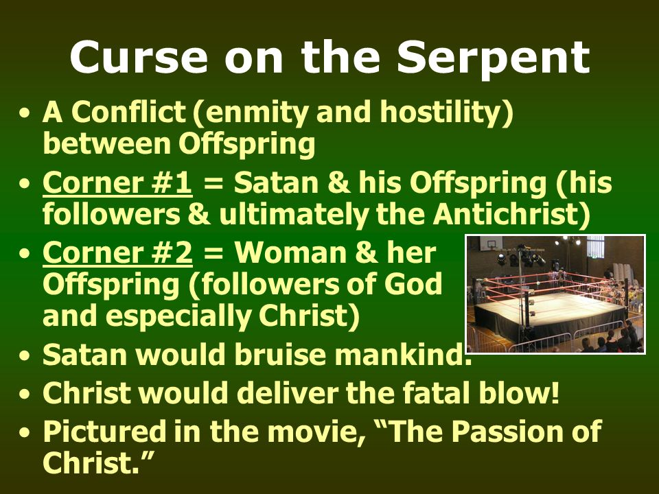 Curse on the Serpent A Conflict (enmity and hostility) between Offspring.