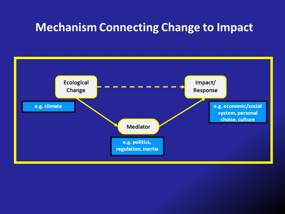 Mechanism Connecting Change to Impact