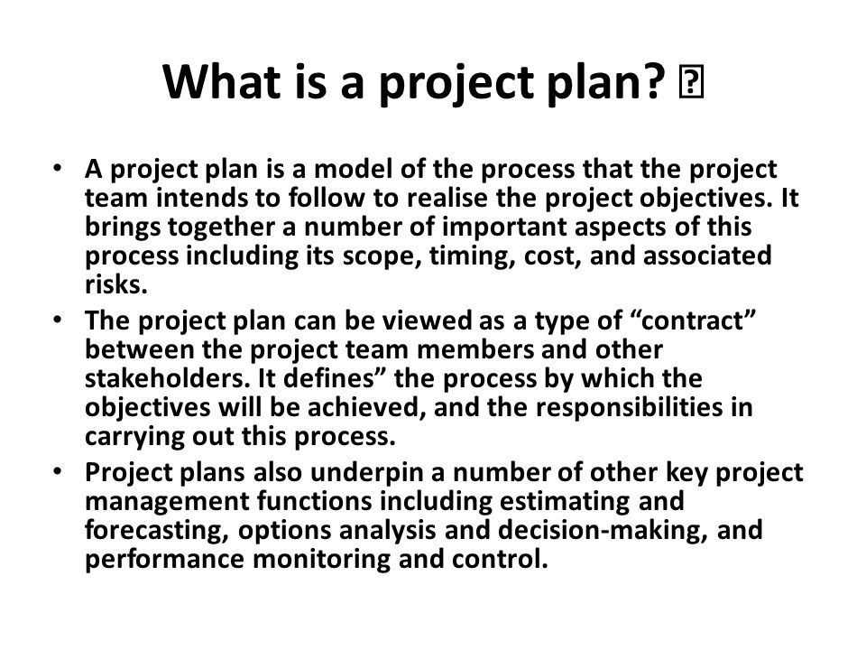 What is a project plan 
