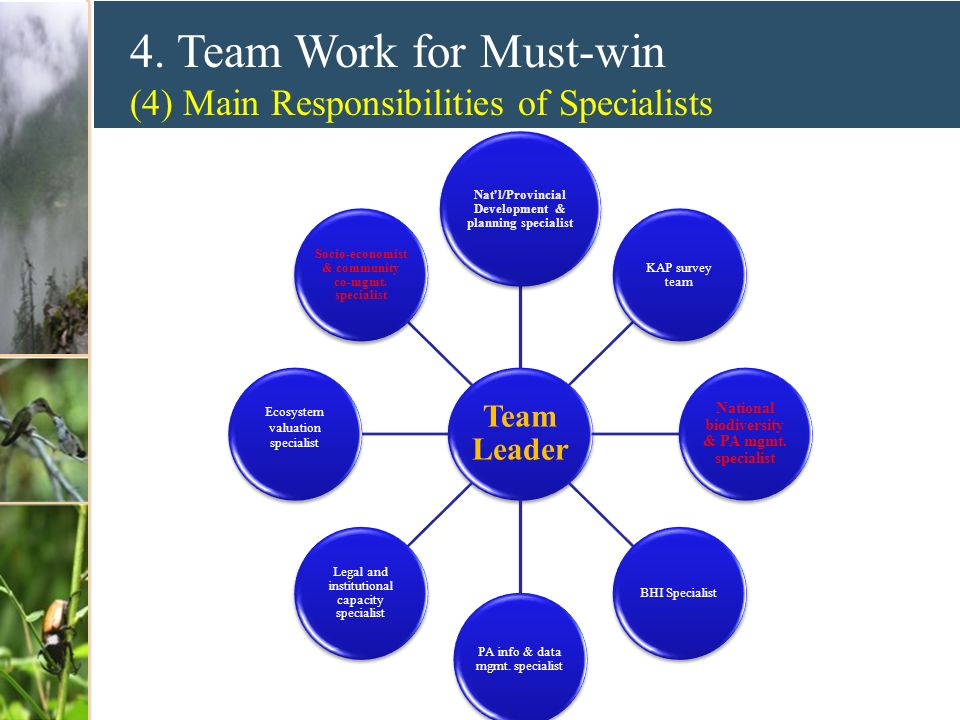 4. Team Work for Must-win (4) Main Responsibilities of Specialists