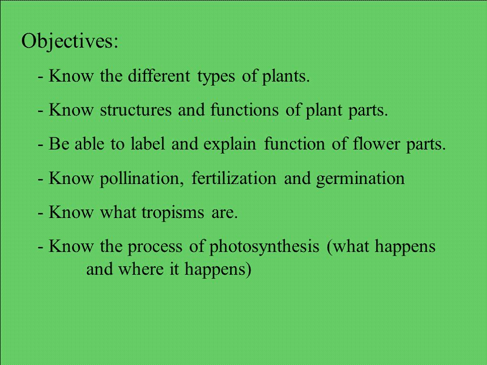 Objectives: Know the different types of plants.