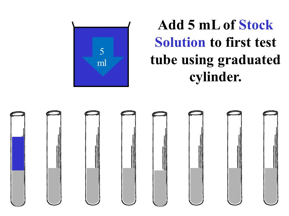 Add 5 mL of Stock Solution to first test tube using graduated cylinder.