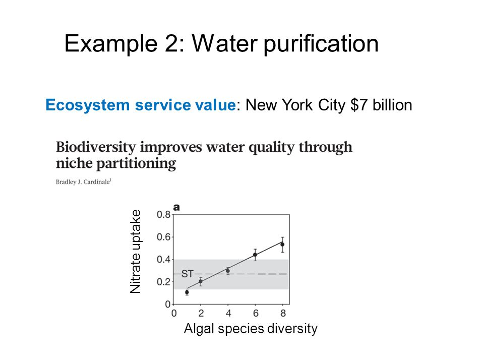Example 2: Water purification