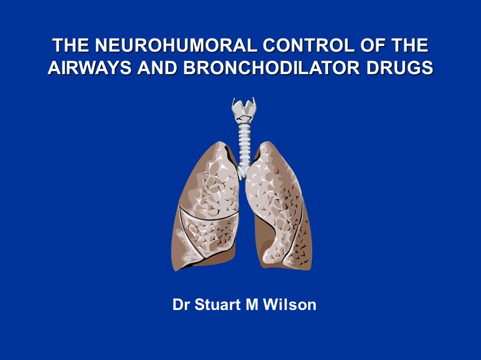 THE NEUROHUMORAL CONTROL OF THE AIRWAYS AND BRONCHODILATOR DRUGS