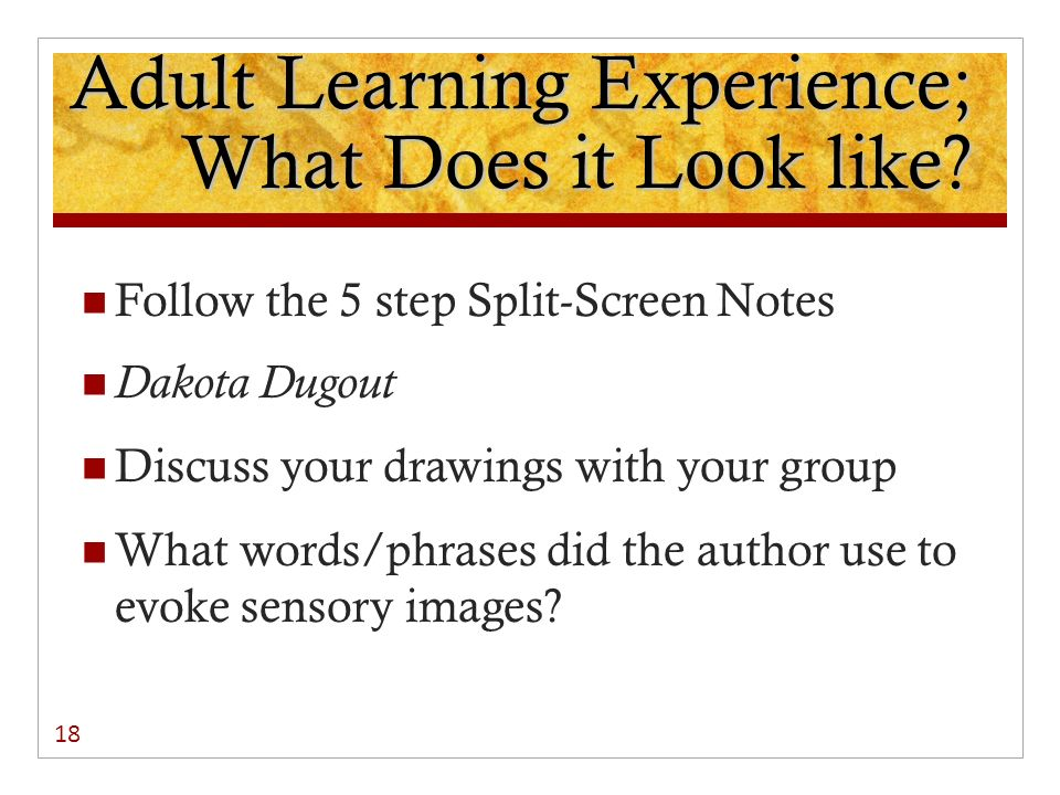 Adult Learning Experience; What Does it Look like