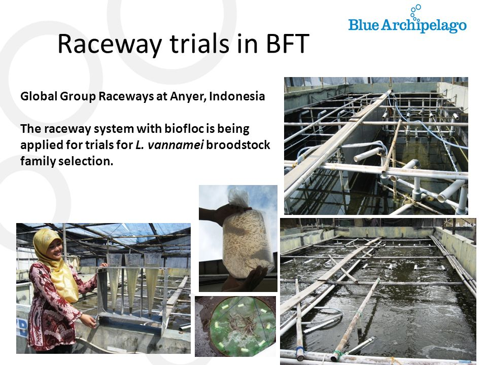 Raceway trials in BFT Global Group Raceways at Anyer, Indonesia