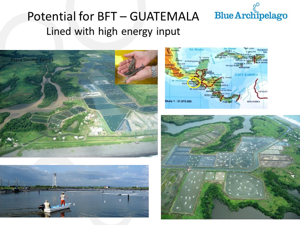 Potential for BFT – GUATEMALA Lined with high energy input