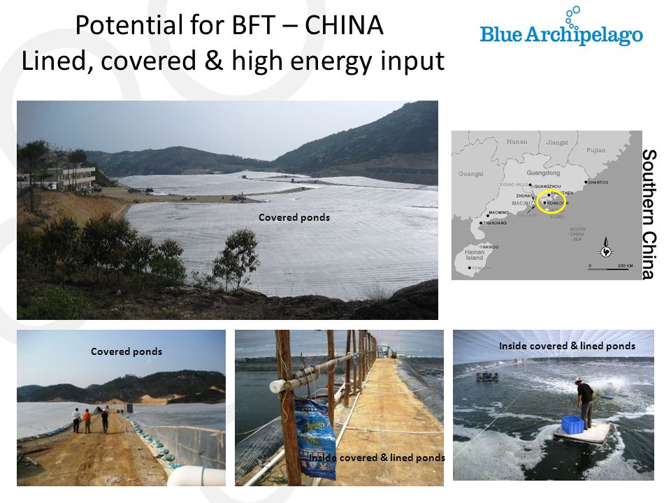 Potential for BFT – CHINA Lined, covered & high energy input