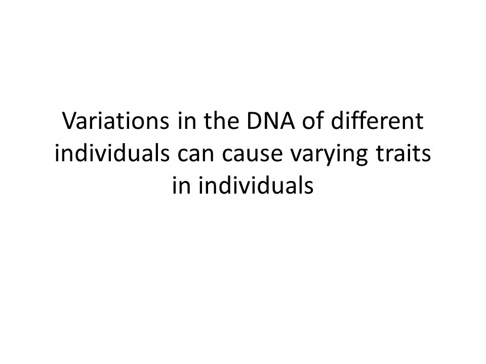 Variations in the DNA of different individuals can cause varying traits in individuals
