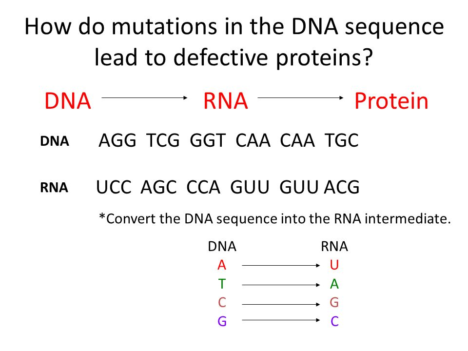 How do mutations in the DNA sequence lead to defective proteins