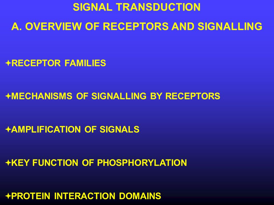 A. OVERVIEW OF RECEPTORS AND SIGNALLING