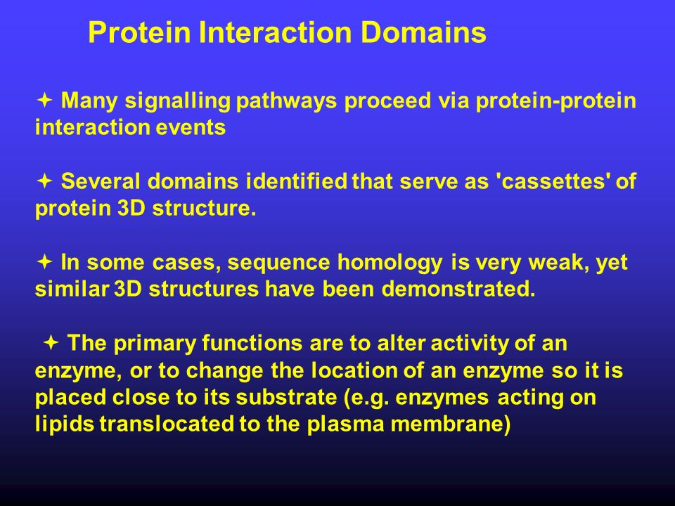 Protein Interaction Domains