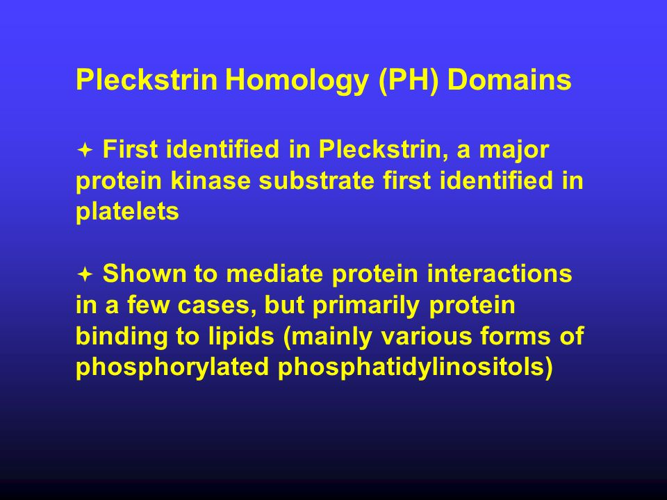 Pleckstrin Homology (PH) Domains