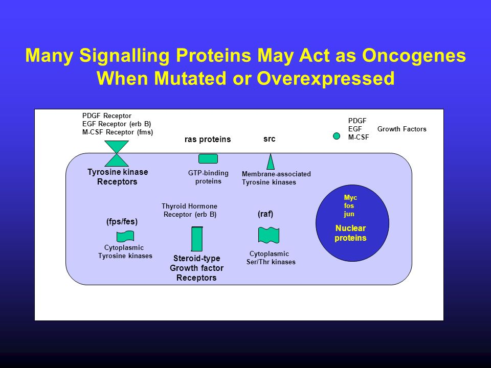 Many Signalling Proteins May Act as Oncogenes