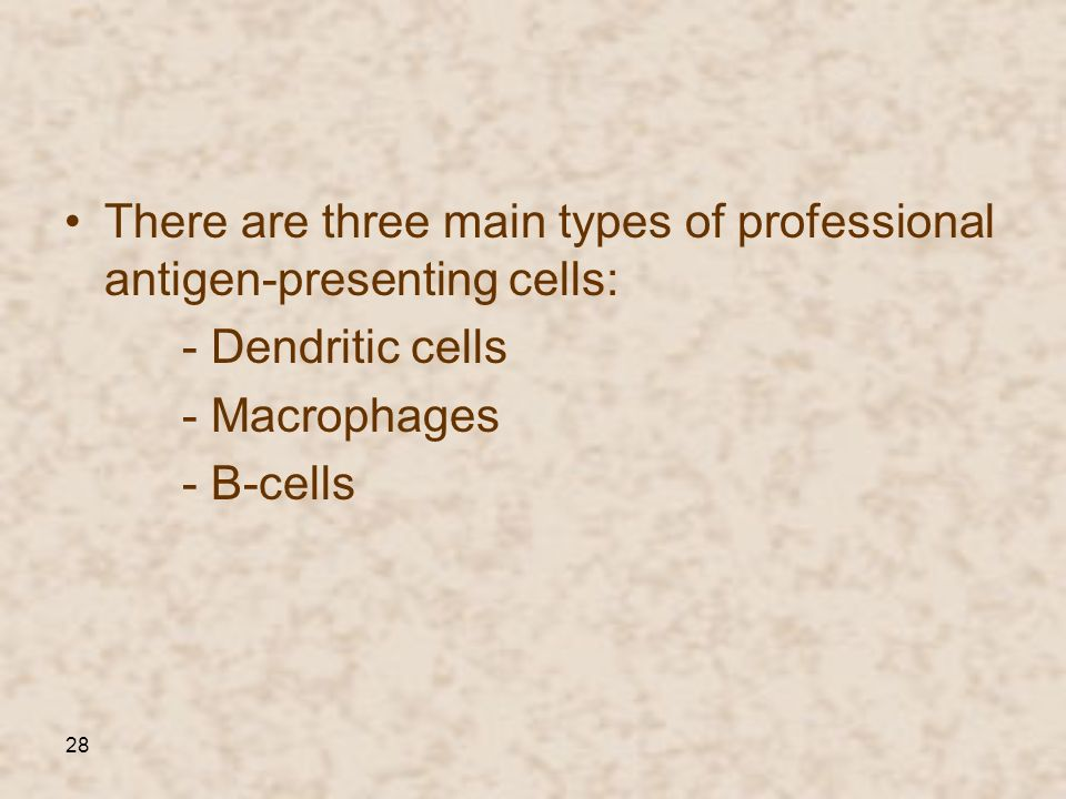 There are three main types of professional antigen-presenting cells: