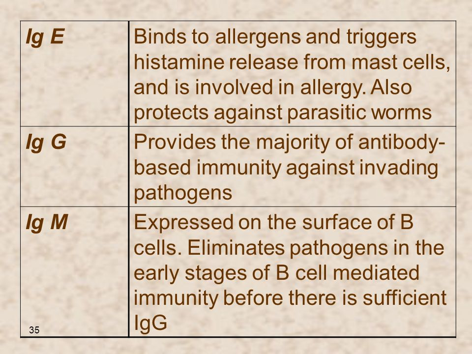 Binds to allergens and triggers histamine release from mast cells, and is involved in allergy. Also protects against parasitic worms