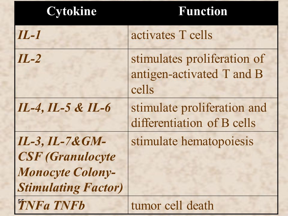 Function Cytokine. activates T cells. IL-1. stimulates proliferation of antigen-activated T and B cells.