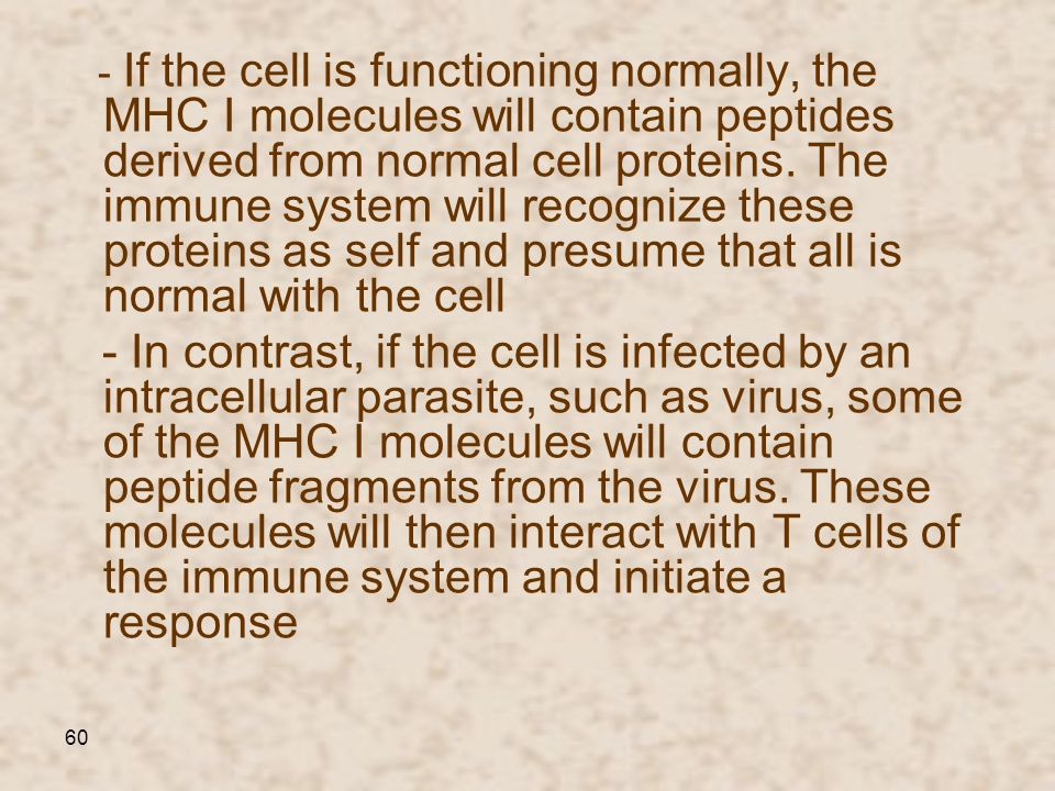- If the cell is functioning normally, the MHC I molecules will contain peptides derived from normal cell proteins. The immune system will recognize these proteins as self and presume that all is normal with the cell