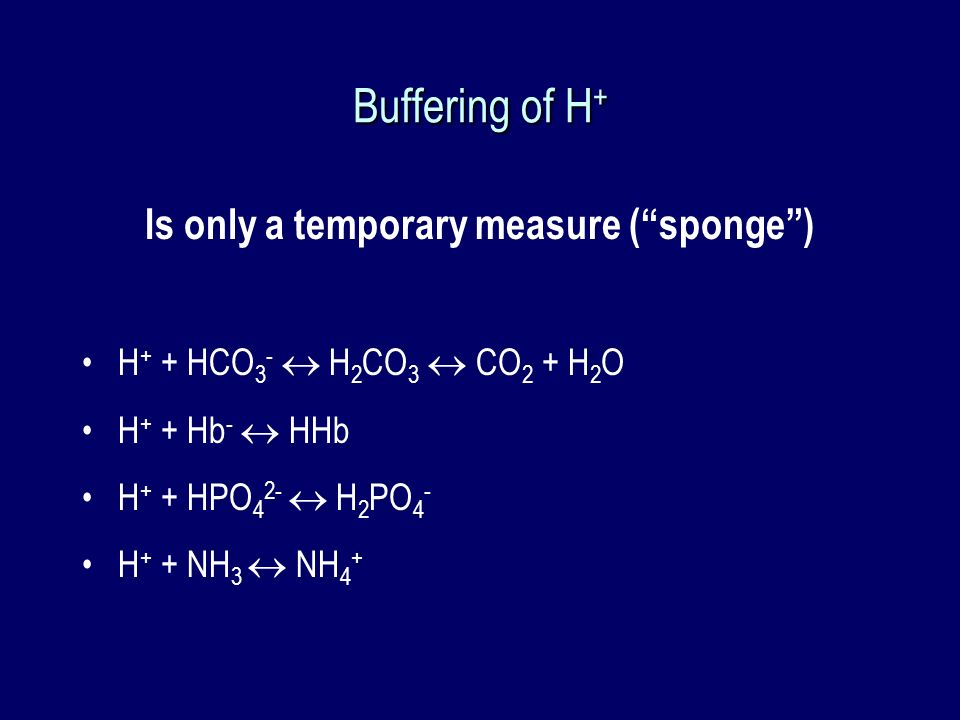 Is only a temporary measure ( sponge )