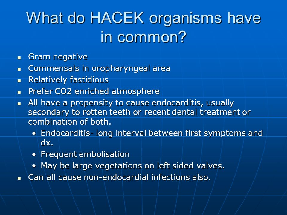 What do HACEK organisms have in common