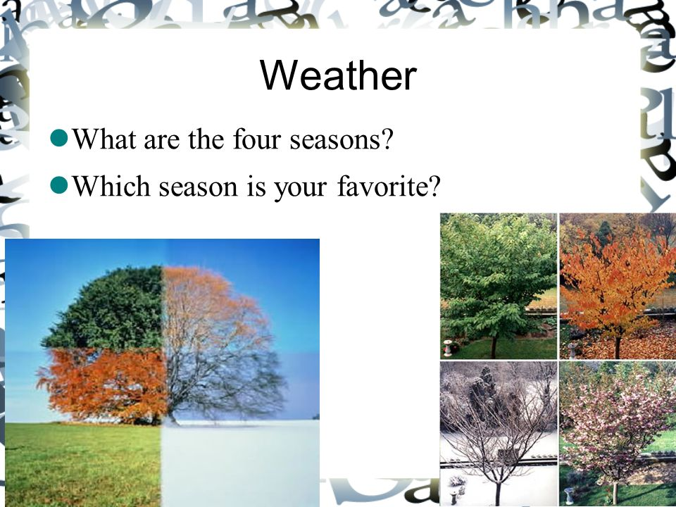 Weather What are the four seasons Which season is your favorite 2 2
