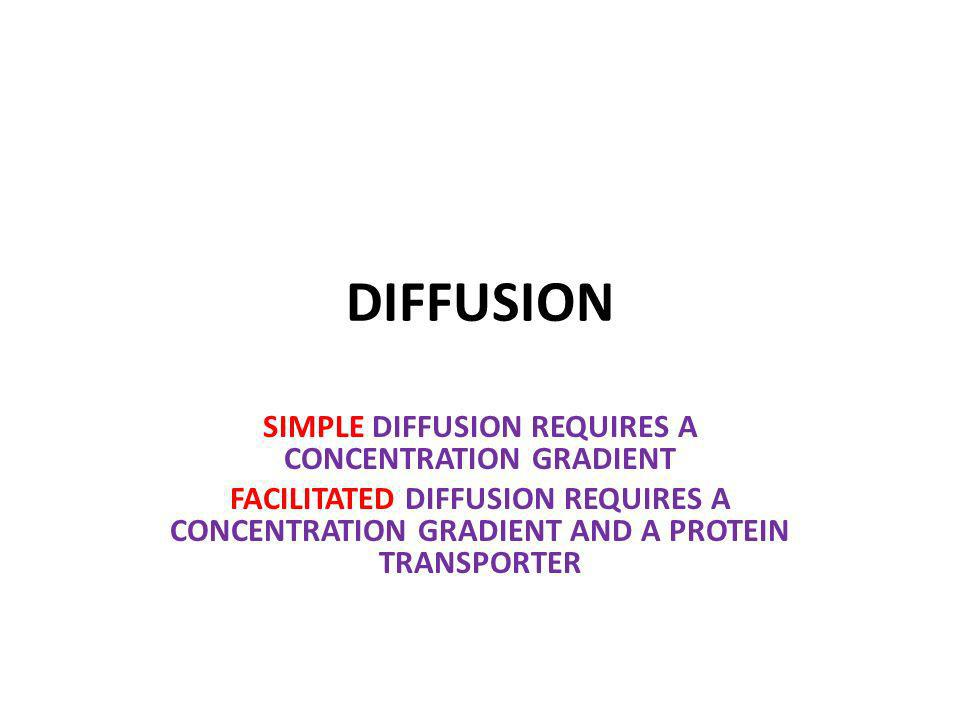 SIMPLE DIFFUSION REQUIRES A CONCENTRATION GRADIENT