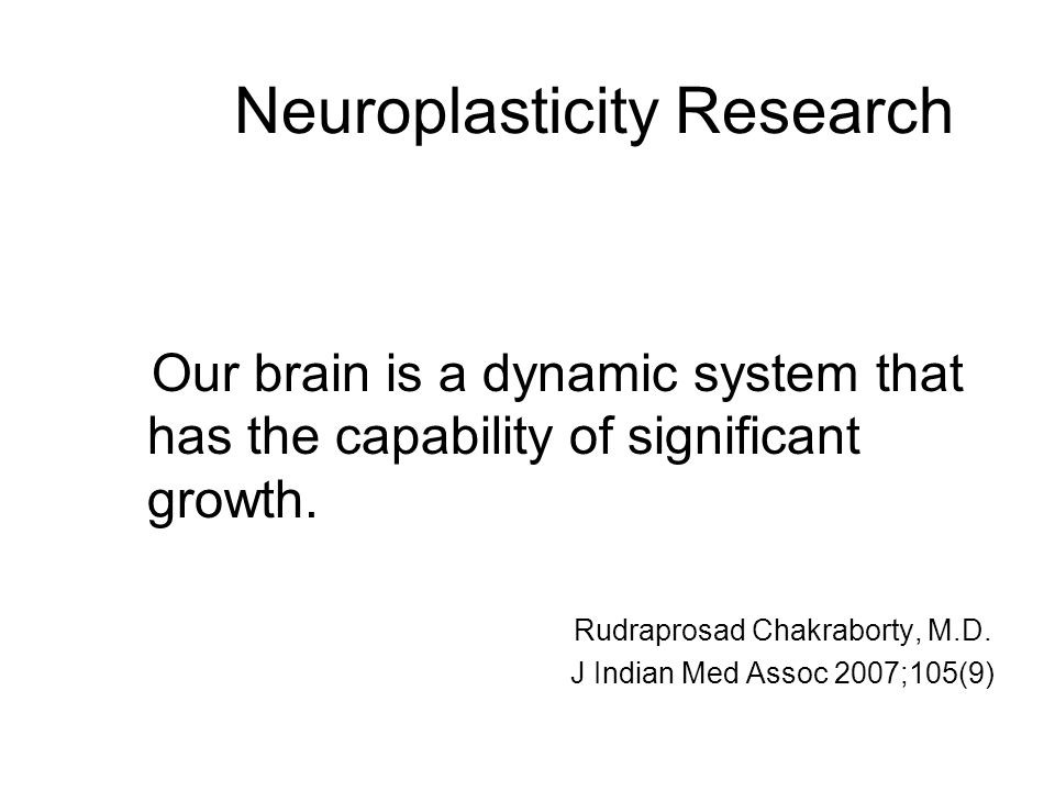Neuroplasticity Research