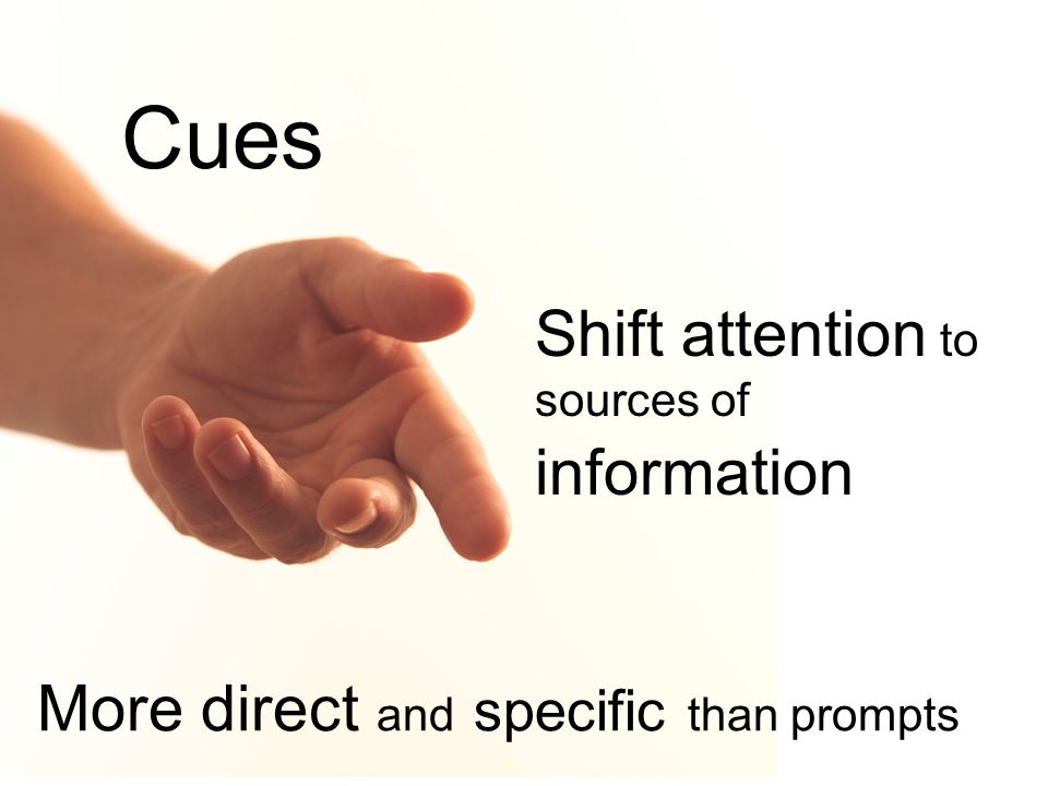 Cues Shift attention to sources of information