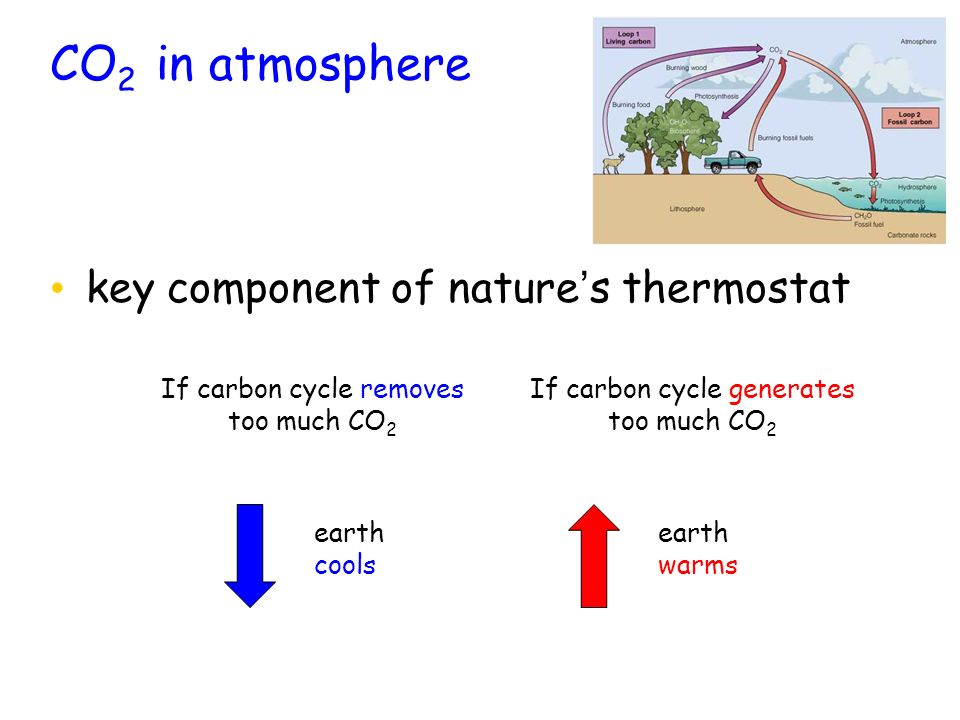 CO2 in atmosphere key component of nature's thermostat
