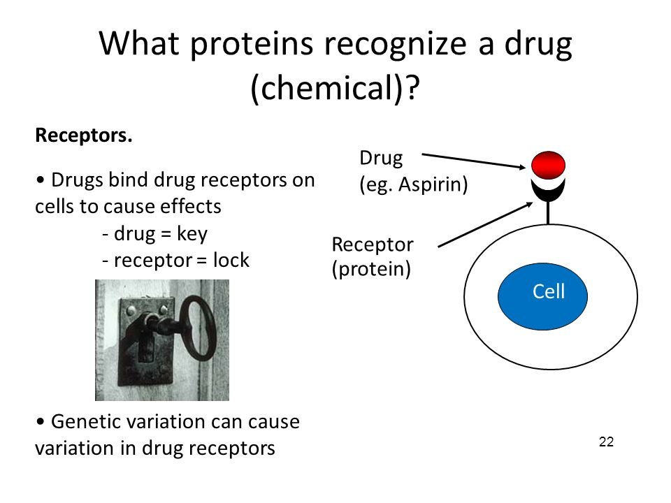 What proteins recognize a drug (chemical)