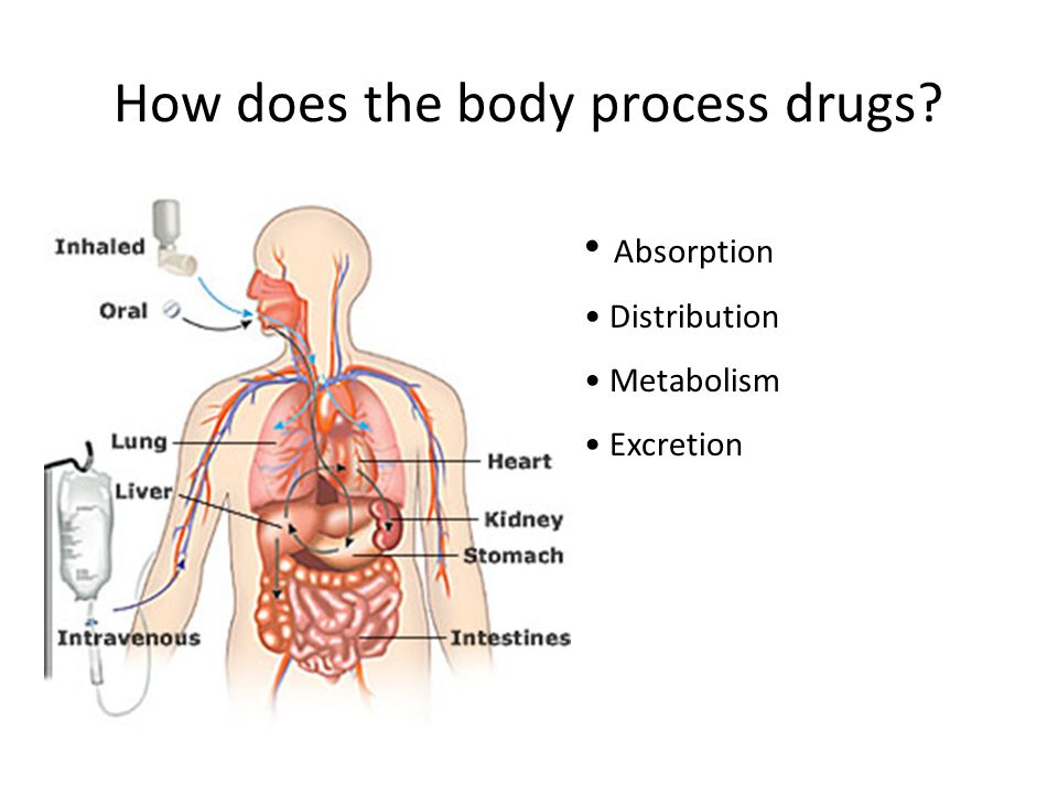 How does the body process drugs