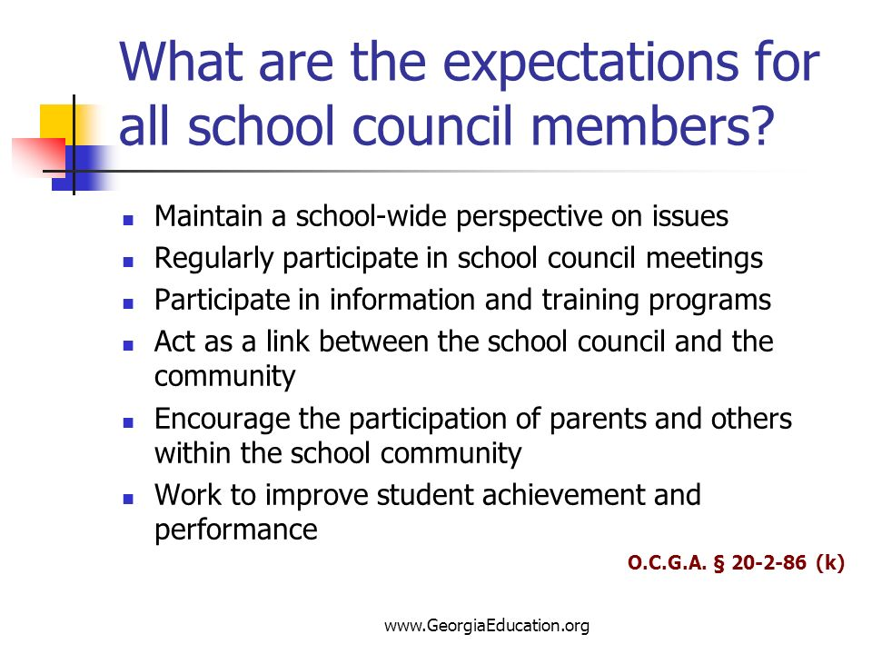 What are the expectations for all school council members